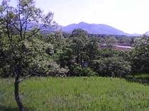 客室から見える泉水山