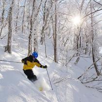 ◆雪が降ったらツリーラン!非圧雪のツリーランコース拡大!