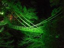 食後の散歩にライトアップされたかずら橋を見に行こう!宿から600mですよ