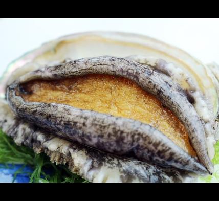 大漁!大漁!【金目の煮付け+舟盛り+伊勢海老+あわび】海の幸大漁プラン