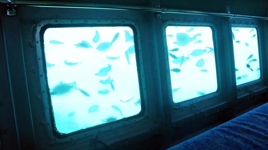 遊覧船イルカ号船底