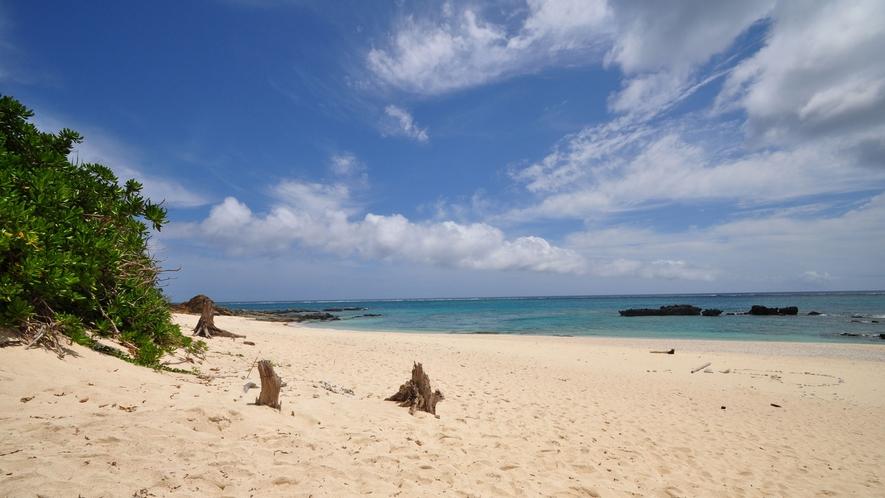 【赤崎海岸】砂浜も岩場もありシュノーケリングが楽しいビーチ