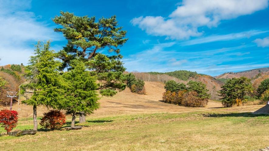 どこまでも緑が続く大自然!沼尻高原でリフレッシュ