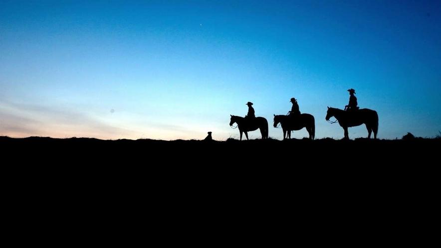 阿蘇ハイランド乗馬クラブのスターライトトレッキングの画像です。