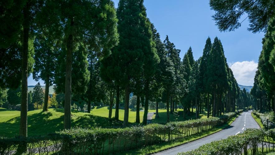 <阿蘇リゾートグランヴィリオホテル>ホテルまではゴルフ場を横目に眺めながらお越しください。
