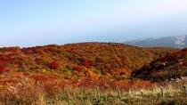 ドンデン山荘から見た紅葉