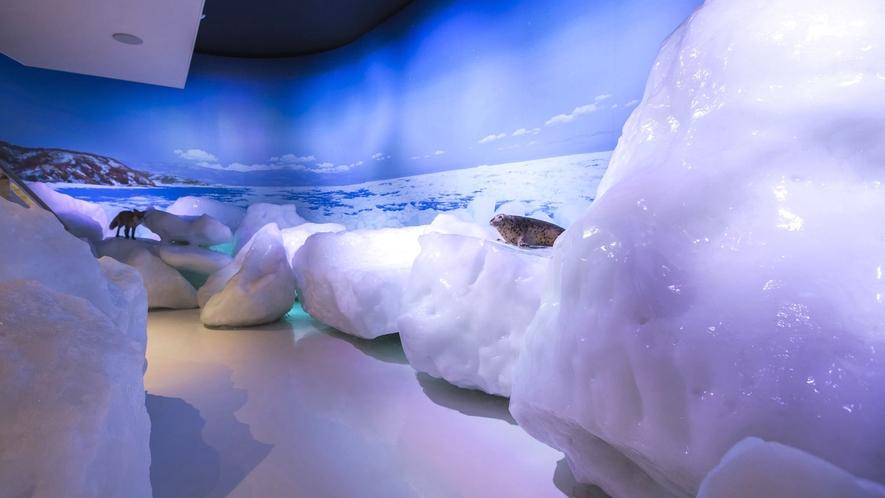 ◆新オホーツク流氷館 流氷体感テラス