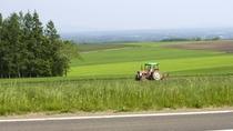 ◆網走の風景/ホテル周辺は、北海道らしい田園風景が広がります