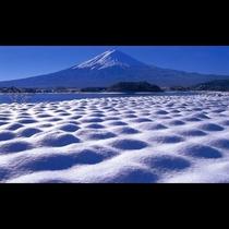 ■富士山とラベンダー畑<冬>(写真提供:富士河口湖 観光課)