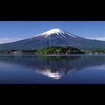 ■富士山と河口湖<春>(写真提供:富士河口湖 観光課)