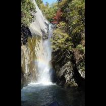■仙娥滝(写真提供:甲府観光協会)