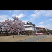 ■舞鶴城公園(写真提供:甲府観光協会)