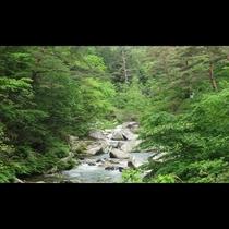 ■渓谷(写真提供:甲府観光協会)