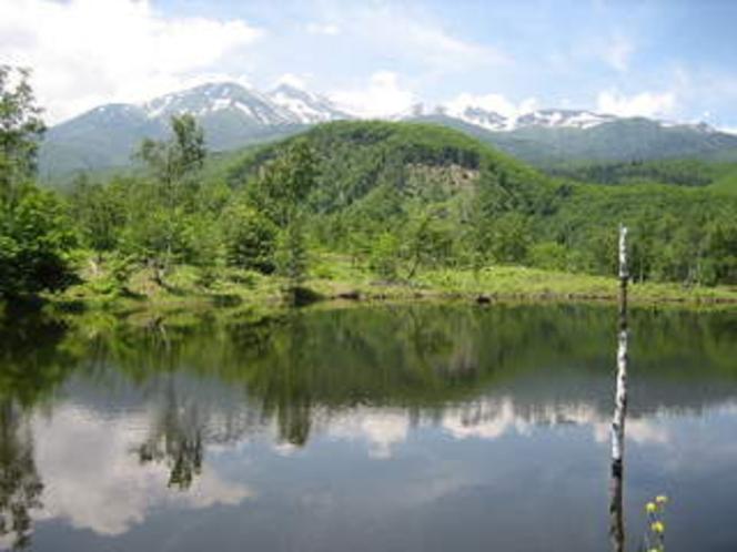 夏の乗鞍岳