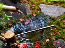 閑古錘に秋の訪れが・・・