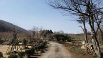 彩冬農園の小道