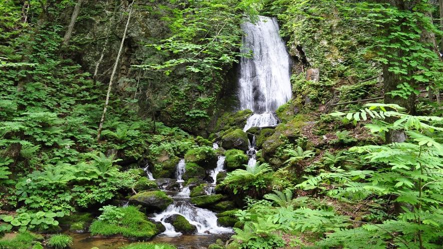 日本の滝百選「不動の滝」