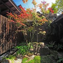 特別室の坪庭
