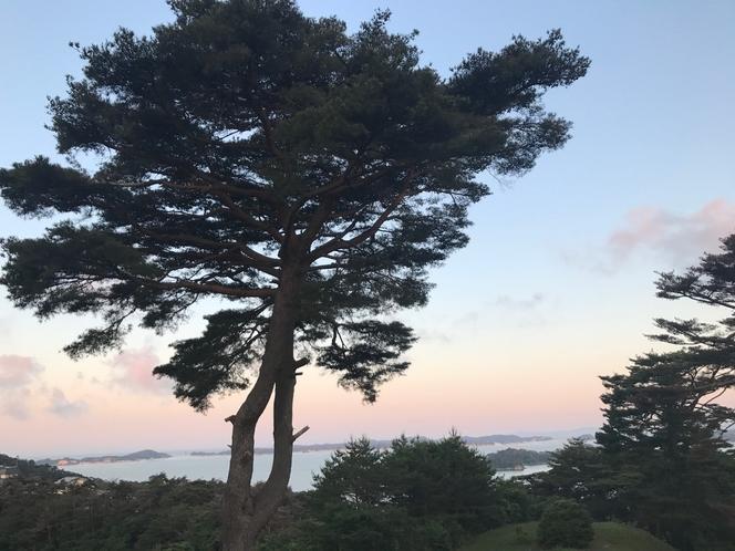 夏の夕暮れ 西行戻しの松公園