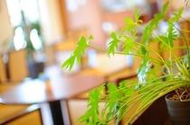 緑溢れるロビーは、大切なお客様との出会いの場所です。清潔なロビーを心掛けております。
