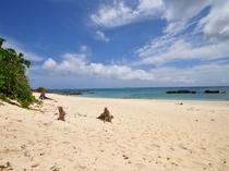 【赤崎海岸】砂浜も岩場もありシュノーケリングが楽しいビーチ♪