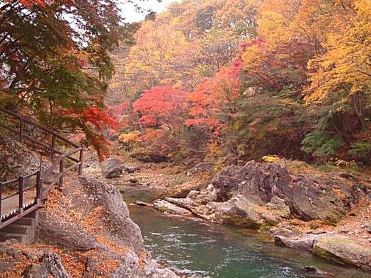 【紅葉を観に行こう!】谷川岳や諏訪峡を散策♪ 1泊2食付きバイキングプラン【現金特価】