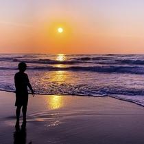 鳥取砂丘の夕暮れ。季節ごとに趣が異なる美しい夕陽をご堪能下さい。