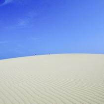 【鳥取砂丘】お車で20分 日本一の砂丘、「鳥取砂丘」もお車ですぐ。