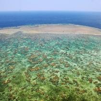 *【風景】海の青と砂浜の白のコントラスト。美しい色合いをお楽しみ下さい。