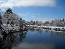 歩いてすぐの鹿の池。4月に雪が降った時に撮りました。白樺林を抜けてすぐ行けますよ。
