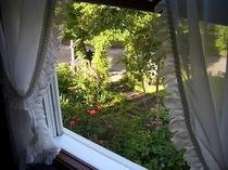 洋室ツインから庭を眺めました。バラは窓辺に咲き、南アルプスが白樺の向こうに。