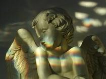 ステンドの光の中の天使 いつの間にかイタリアの天使がたくさん住むようになりました。