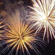 8月第1土曜日には足利花火大会が開催されます!