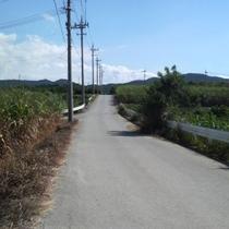 コテージまでの道
