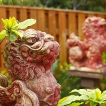 亜熱帯ガーデン