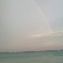 朝焼けの海にかかる虹
