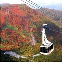 那須ロープウェー(秋)9月中旬~10月中旬が見頃。