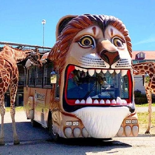 那須サファリパーク ライオンバスに乗って餌付け体験!