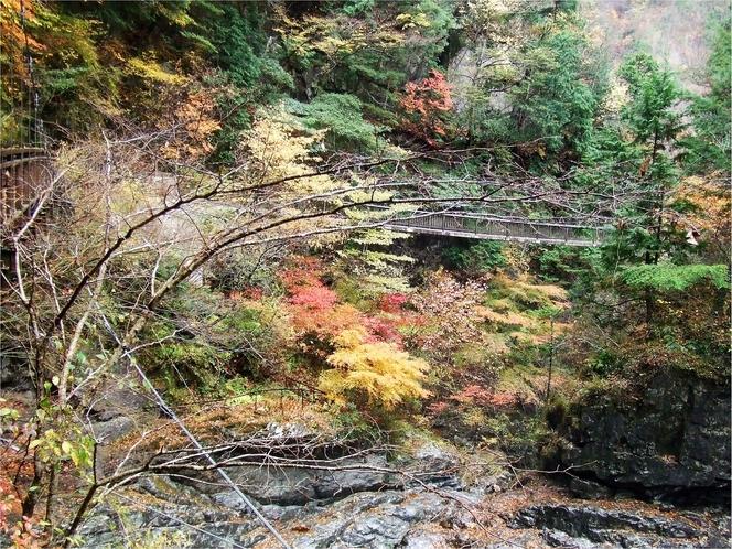 御手洗渓谷の紅葉