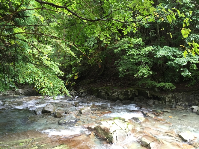 山上川上流
