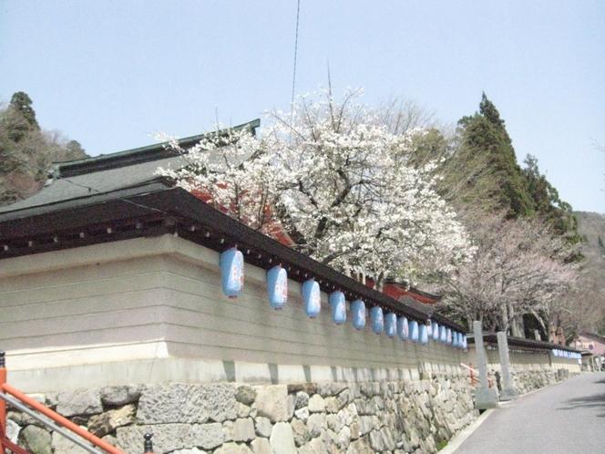 龍泉寺(春)