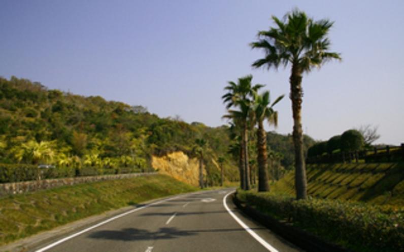 サンパーク道路