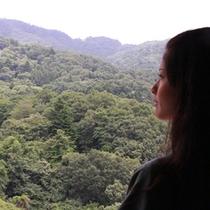 *筑波山側のお部屋からの眺望