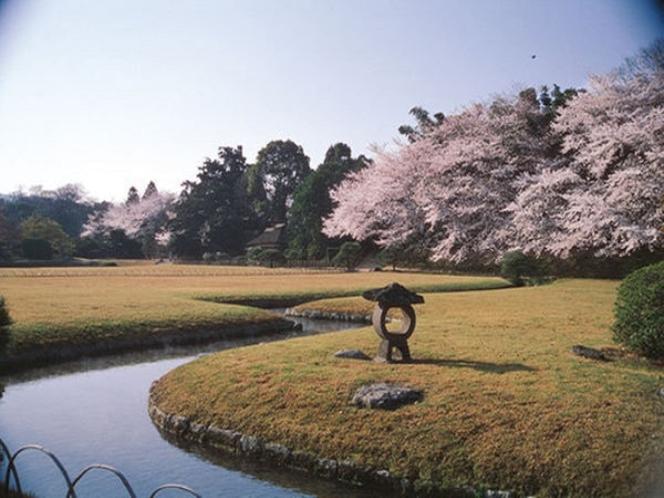 桜の後楽園