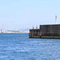 【阿字ヶ浦漁港】堤防で魚を釣る人が多い