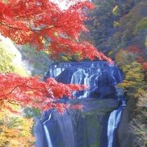 【袋田の滝紅葉】当館から60km、約1時間半。11月上旬から中旬が見頃