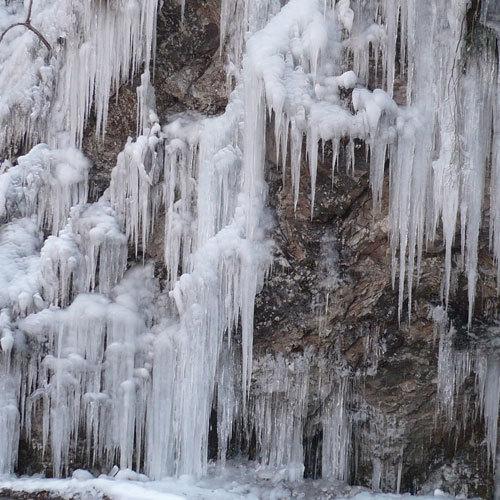 秩父市・小鹿野町には氷柱の名所があります(当館からお車で約60分〜90分)