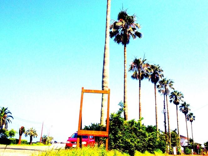 吉佐美大浜海岸