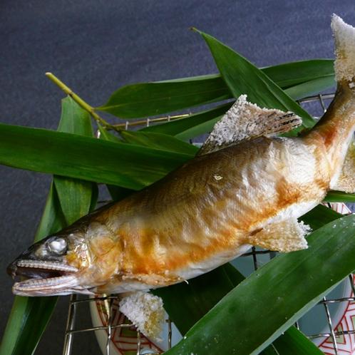 *【地鮎塩焼き】足羽川産の鮎をお楽しみください