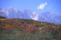 風景 015 秋・白馬三山 三段紅葉